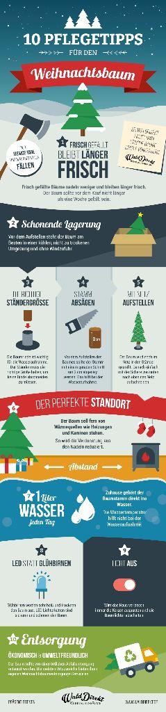 WaldDirekt_Infographic-final