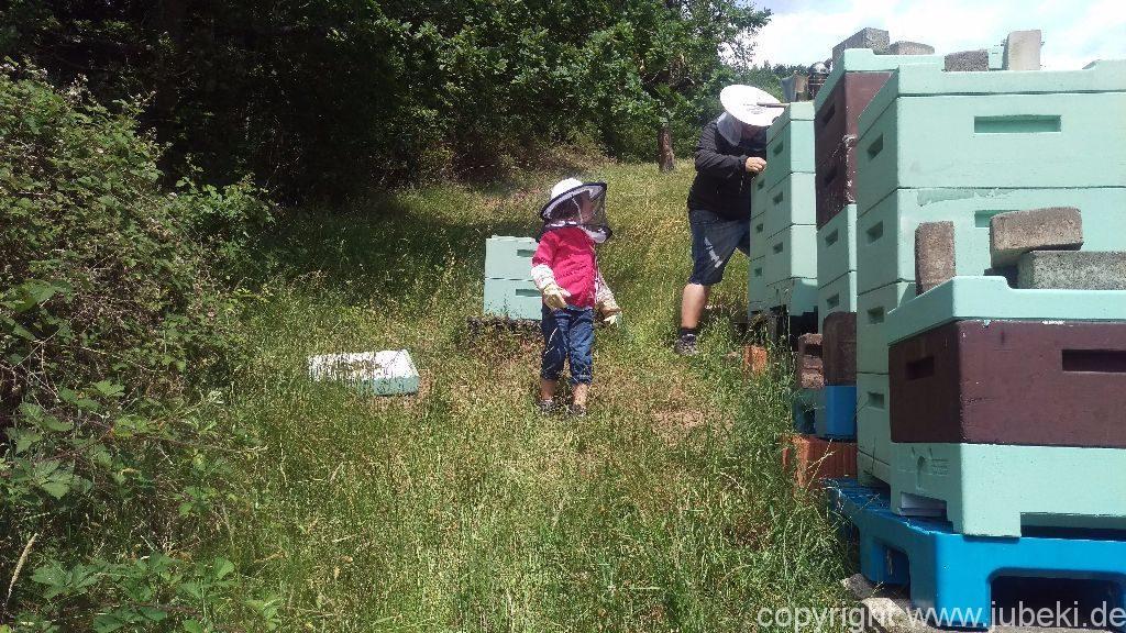 Geburtstag und Bienen